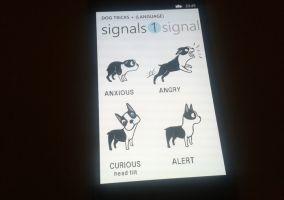 Dog Tricks +
