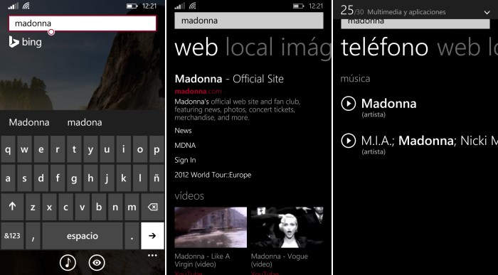 busqueda bin dentro telefono windows phone 8.1