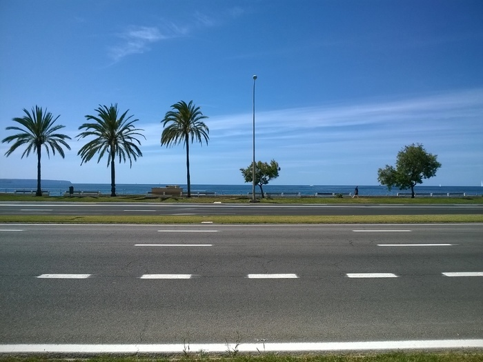 Lumia-1320-camara-carretera