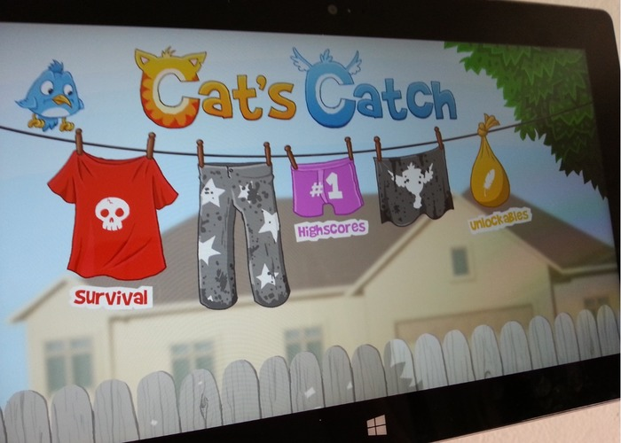 Cats-Catch
