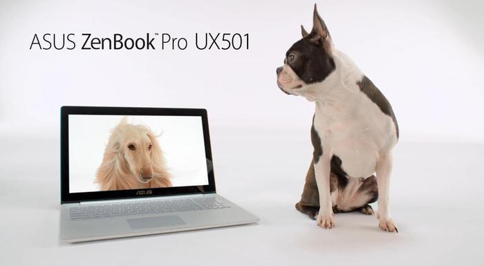 ASUS Zenbook Pro UX501 perros