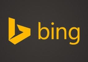 Bing Logo Gris
