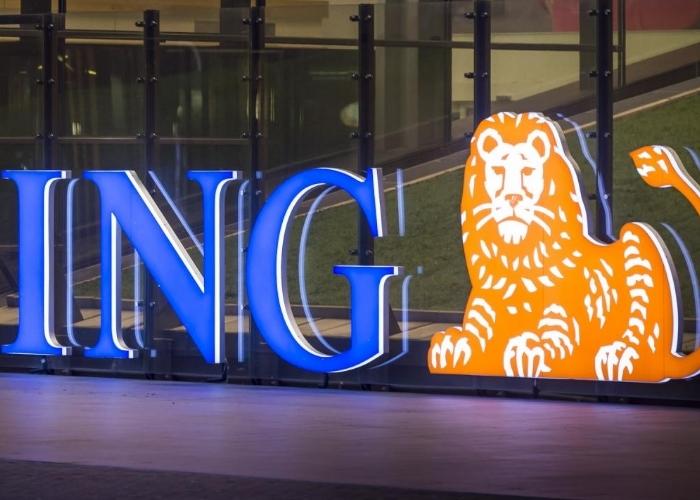 ING Logo Empresa
