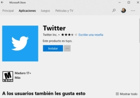 Twitter Microsoft Store